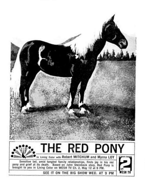 1965-05-wesh-red-pony